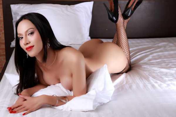 thai homoseksuell escort review com escort